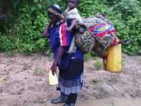 "25 Years After Liberation: No ""Refugees"", But 244,786 Rwandan ""Asylum Seekers"""