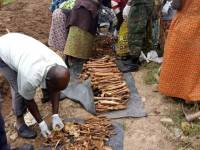 Remains of 104 Genocide Victims Exhumed At Catholic Church In Southern Rwanda