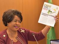 African Union Fires Diplomat For Criticising France's 'Continued Colonialism'