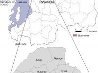 Who Could Have Conducted Latest Attack In Northwest Rwanda?