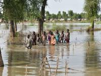 Heavy Rain and Flooding Kill 250 People, Displace 3m In EAC Region