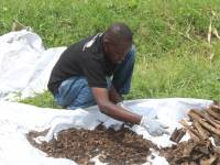 Tracing Mass Grave Being Exhumed at Airport Near Rwanda-DR Congo Border