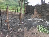 Military Offensive Ongoing to Dismantle Source of FDLR Financing near Congo's Virunga Park