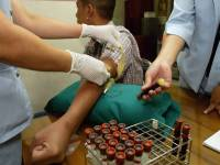 Why Do HIV Vaccine Trials Keep Failing?