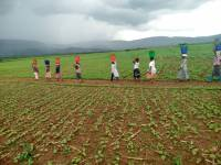By 2050, Rwanda Will Need Four-Times its Size to Feed Exploding Population
