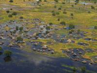 Floods Leave Half of South Sudan Under Water, Thousands of Families Homeless