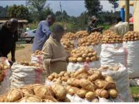Why DR Congo's Expensive Potatoes are Coming to Rwanda