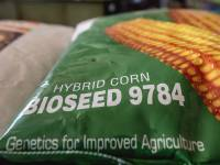 A New Chance for Genetically Engineered Crops